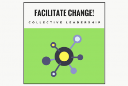 Facilitate Change! Workshop 3: Collective Leadership