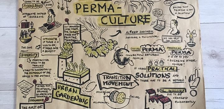 Learnings from Social Permaculture